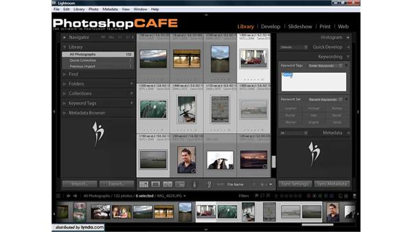 Using keywords to organize images: Lightroom 1.3 for Digital Photographers