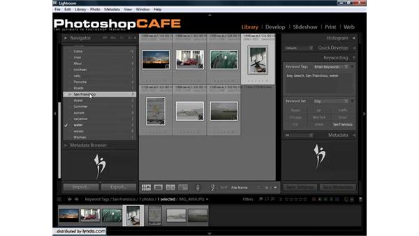 Fixing misspelled keywords on multiple images: Lightroom 1.3 for Digital Photographers
