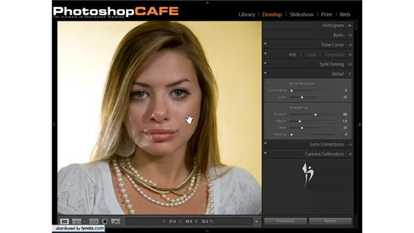 Removing blemishes: Lightroom 1.3 for Digital Photographers