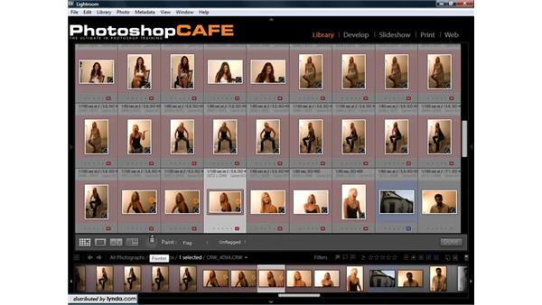 Using the Painter tool to copy settings to multiple photos: Lightroom 1.3 for Digital Photographers