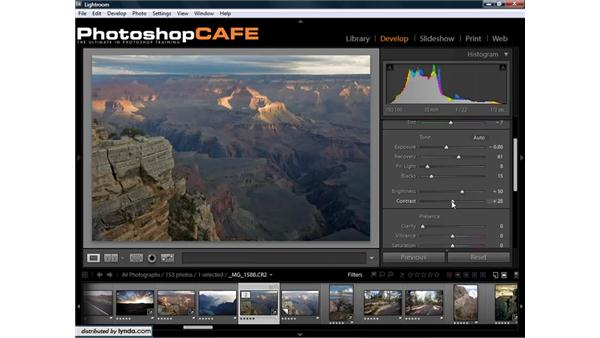The Basic Adjustments panel: Lightroom 1.3 for Digital Photographers