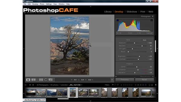 Fixing underexposed and overexposed images: Lightroom 1.3 for Digital Photographers