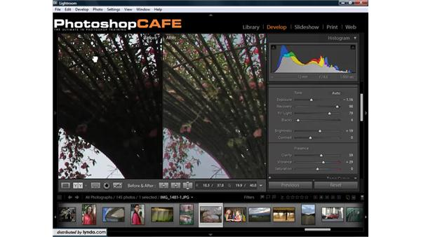 """Comparing """"before"""" and """"after"""" images: Lightroom 1.3 for Digital Photographers"""