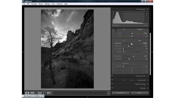 Converting grayscale images: Lightroom 1.3 for Digital Photographers