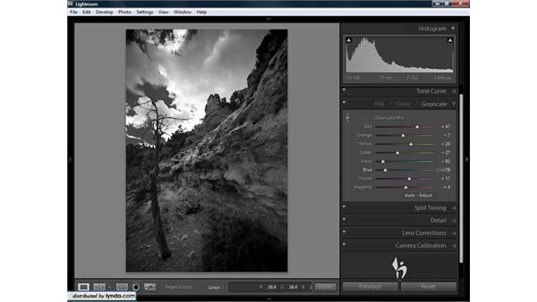 Advanced grayscale workflow: Lightroom 1.3 for Digital Photographers