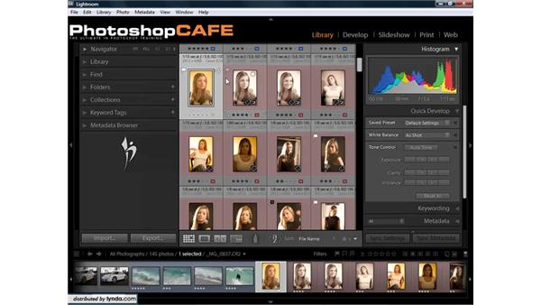 Syncing RAW files with Bridge, Lightroom, and Photoshop: Lightroom 1.3 for Digital Photographers
