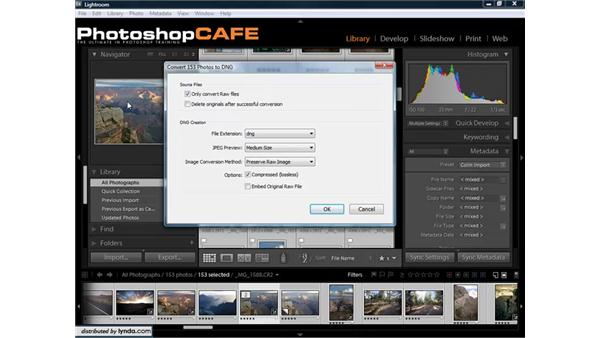 What is DNG, and how can Lightroom help?: Lightroom 1.3 for Digital Photographers