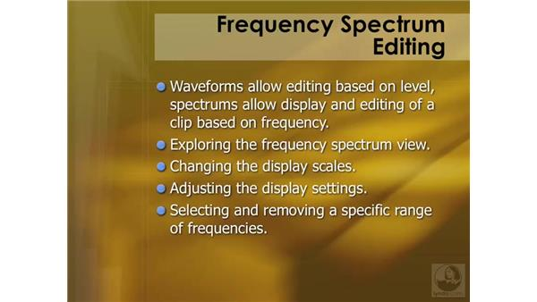 Frequency spectrum editing overview: Soundtrack Pro 2 Essential Training