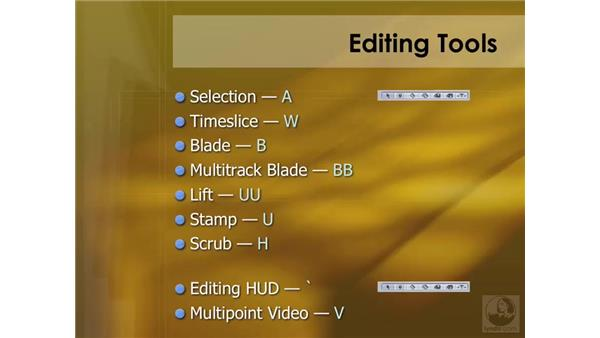 Multitrack editing overview: Soundtrack Pro 2 Essential Training