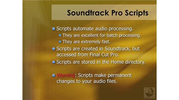 Soundtrack Pro script overview: Soundtrack Pro 2 Essential Training