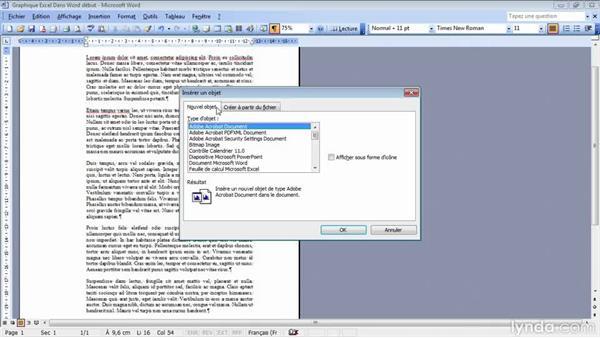 video2brain - microsoft office 2010 access word et excel