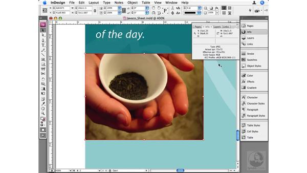 Working with RGB images: InDesign CS3 Beyond the Basics