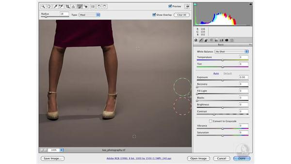 Healing in Camera Raw: Photoshop CS3 Portrait Retouching Essentials