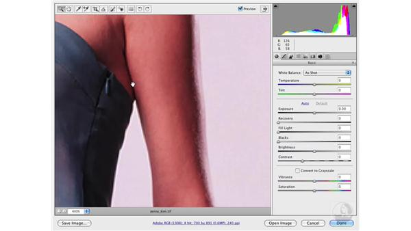 Healing and cloning in Camera Raw: Photoshop CS3 Portrait Retouching Essentials
