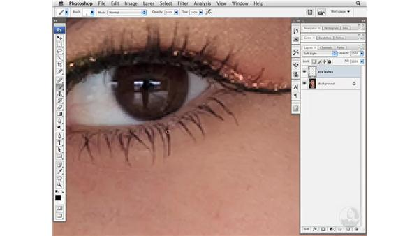 Increasing eyelash density: Photoshop CS3 Portrait Retouching Essentials