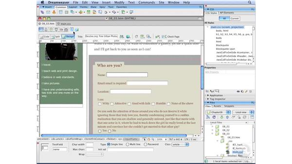 Styling form elements globally: Dreamweaver CS3 with CSS Essential Training