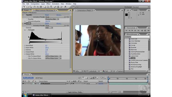 Equalize effect: After Effects CS3 Effects