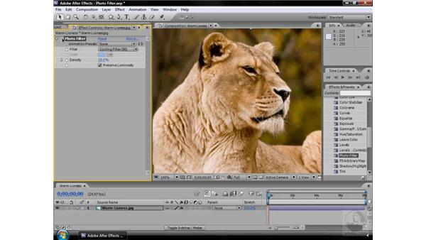 Photo Filter effect: After Effects CS3 Effects