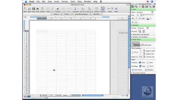 Adding and removing sheets: Excel 2008 for Mac Essential Training