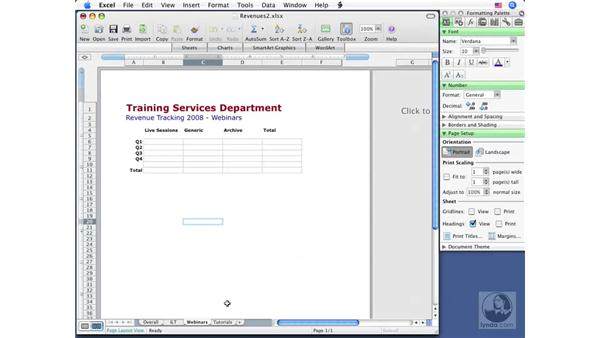 Renaming and hiding sheets: Excel 2008 for Mac Essential Training