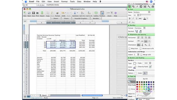 Manipulating cells: Excel 2008 for Mac Essential Training