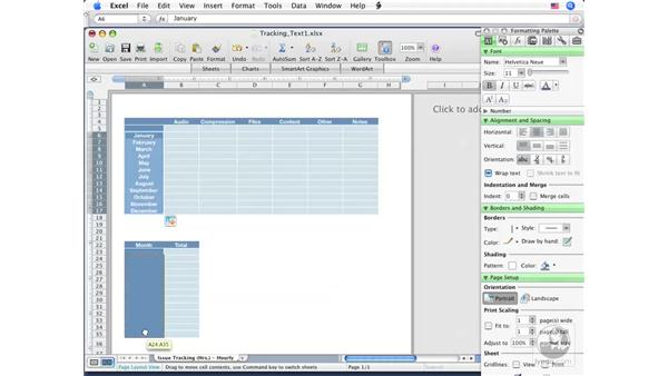 Adding and removing text: Excel 2008 for Mac Essential Training