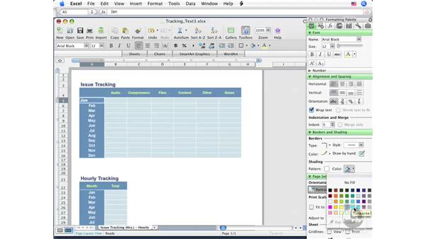 Using the Format Painter: Excel 2008 for Mac Essential Training