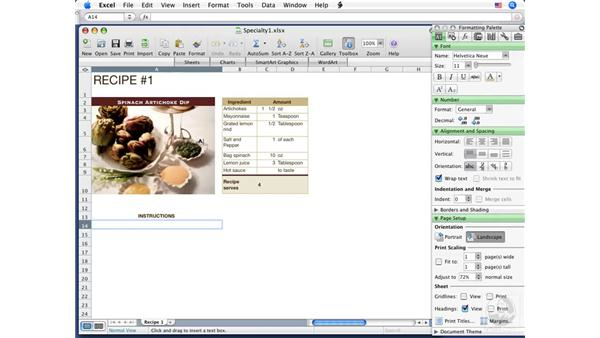 Inserting text boxes: Excel 2008 for Mac Essential Training