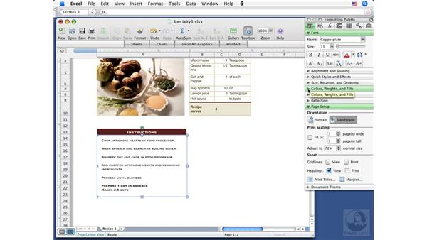 Modifying text in a text box: Excel 2008 for Mac Essential Training