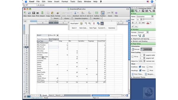 What are PivotTable reports?: Excel 2008 for Mac Essential Training