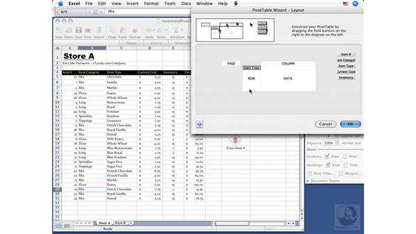 Creating a PivotTable report: Excel 2008 for Mac Essential Training