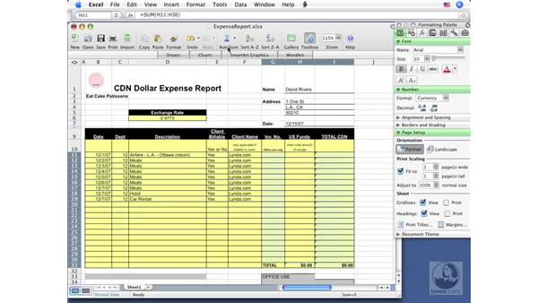 Protecting a workbook: Excel 2008 for Mac Essential Training
