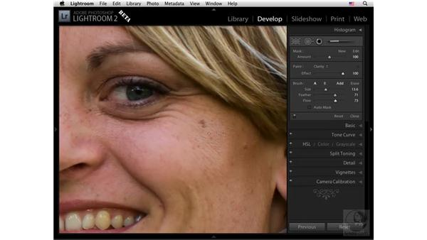 Sharpening and detail: Lightroom 2 New Features