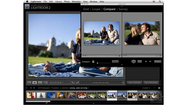 Using multiple monitors: Lightroom 2 New Features