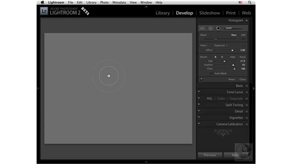 Deconstructing the Retouch tool: Lightroom 2 New Features