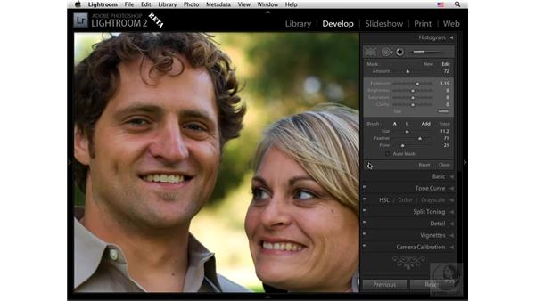 Using the Retouch tool to dodge or brighten: Lightroom 2 New Features