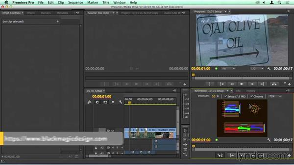 Setup: Workspaces, reference panels, and scopes: Migrating from Final Cut Pro 7 to Premiere Pro CC
