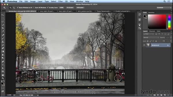 Welcome: Bert Monroy: The Making of Amsterdam Mist, the Natural Elements