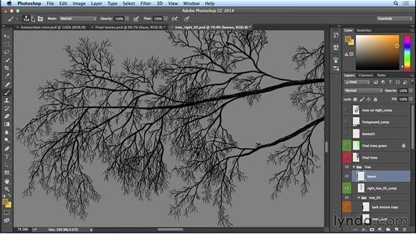 Creating a leaf brush: Trees: Bert Monroy: The Making of Amsterdam Mist, the Natural Elements