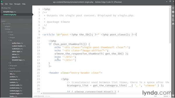 Using functions: WordPress Developer Tips: DRY Development