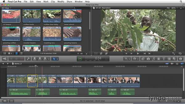 Exploring different types of storytellers: Effective Storytelling with Final Cut Pro X v10.1.x