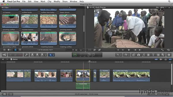 Identifying story elements: Effective Storytelling with Final Cut Pro X v10.1.x
