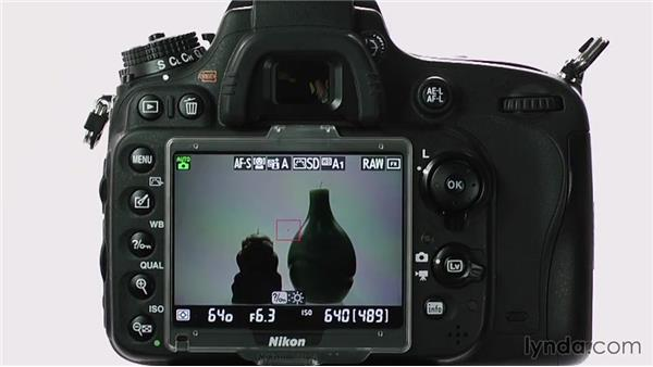 A guided tour: Buttons, ports, and controls: Up and Running with the Nikon D600 and D610