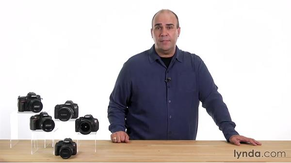 What is Programmed Auto mode?: Up and Running with the Nikon D600 and D610