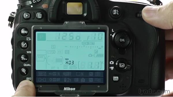 Changing ISO: Up and Running with the Nikon D600 and D610