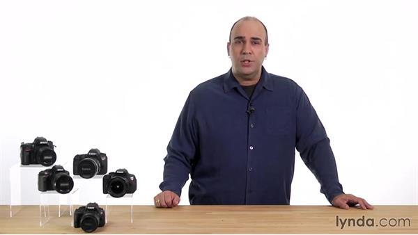 Quiet shutter-release and quiet continuous shutter-release modes: Up and Running with the Nikon D600 and D610