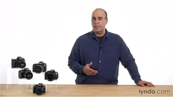 Understanding metering modes and switching between them: Up and Running with the Nikon D600 and D610