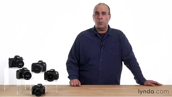 Shutter-Priority Auto mode: Up and Running with the Nikon D600 and D610