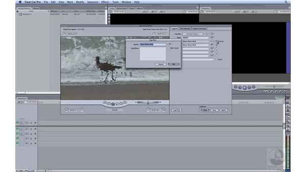 Capturing native HDV: HD Workflows with Final Cut Studio 2