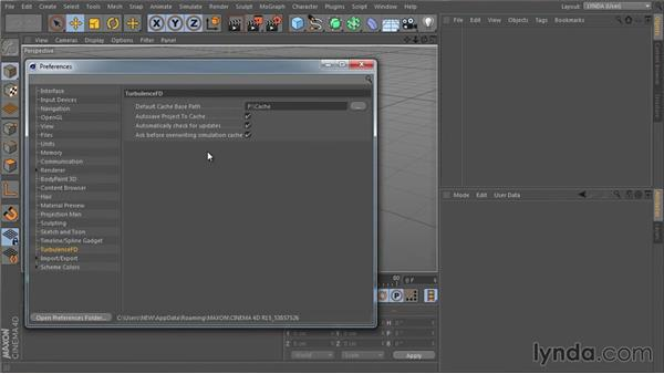 TurbulenceFD (TFD) preferences: TurbulenceFD for CINEMA 4D Essential Training